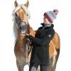 Пальто, black forest купить в интернет магазине конной амуниции