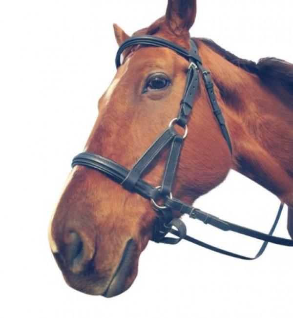 Уздечка Сайд-пулл купить в интернет магазине конной амуниции